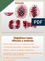 tema2 (2).ppt