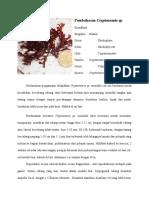 Cryptonemia sp.docx