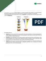 Especiação.pdf