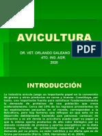 AVICULTURA 1 clase.pptx