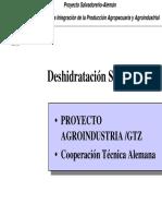 230123211-Deshidratador-Solar-Aleman.pdf