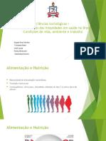As causas sociais das iniquidades em saúde no Brasil - Condições de vida, ambiente e trabalho (Apresentação)
