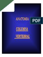 02.Columna Vertebral(1).pdf