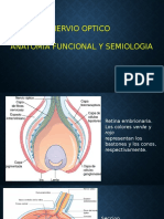 Nervio  optico.pptx