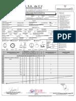 Copia de RT-46 reporte_de_inspeccion_radiografica (actual 2009)REV.5