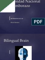 bilingualbrainslides-150121164314-conversion-gate02 (1)
