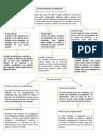 Documento (60)