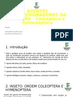 TECNOLOGIAS E PRODUTOS FLORESTAIS-1.pptx