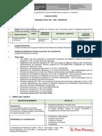 TDR-Proceso-CAS-030 (1).pdf