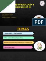 MORFOFISIOLOGÍA Y BIOQUÍMICA III GRUP 4