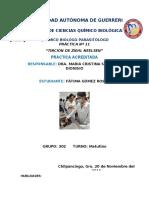 PRÁCTICA N° 11 ''TINCIÓN DE ZIEHL NEELSEN''.docx