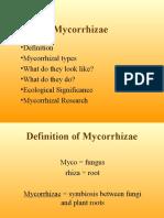 MycorrhizaeLecture-1