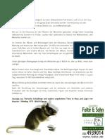 HausmausMusmusculus.pdf