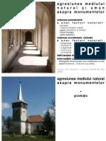 C2_agresiunea mediului natural si uman asupra monumentelor_imagini