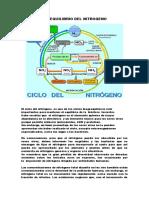 389623227-DESEQUILIBRIO-DEL-NITROGENO-docx.docx