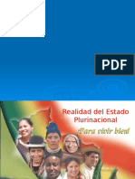 10 realidad plurinacional estadística 10 mar '20.pptx