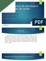 As novas áreas de abordagem aos cuidados de (1) (1).pptx