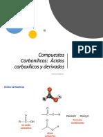 acidos_y_derivados.pdf