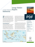 Indonesia Renewable Energy Assessment (FINAL)