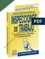 ESTUDIO PRÁCTICO SOBRE LAS INSPECCIONES DE TRABAJO