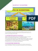 ECOSISTEMA ACUÁTICO Y ECOSISTEMA TERRESTRE 4