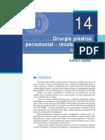 cirurgias periodontal.pdf