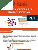 1. Teoría Celular y Biomoléculas.pptx