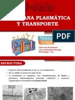 3. Membrana Plasmática y Transporte.pptx
