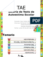 TAE presentación defi (1)