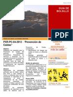 PXR-PC-04-2012 Prevención de Caídas