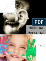 Sistema Sensorial Tato