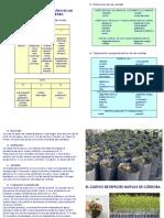 script-tmp-inta_cultivo_de_especies_nativas.pdf