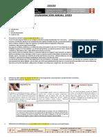Esquema programacion anual 2020 - IE 169.docx