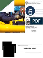 1753118940.GRUPO Nº 6 EXPORTACION DE GAS AL BRASIL