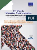 Coleta e Disseminação de Informações na Área de Migração Internacional no Brasil
