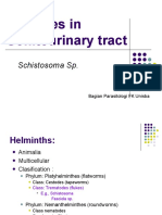 31032016 - PARASITES IN GENITOURINARY SYSTEM