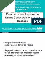 DETERMINANTES_DE_LA_SALUD (1)