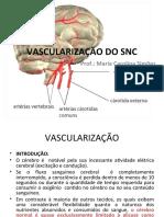 99 Vascularização do SNC