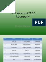 PPT TNGP (tanaman unik spnjang jalan) KEL 4