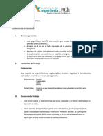 Formato Informe Práctica Profesional ICM