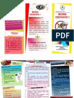 vdocuments.site_leaflet-chikungunya.pdf