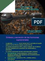 Hormonas corticosuprarreanales.ppt