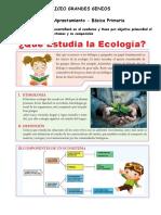 Ecologia Basica - Primaria