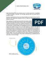 Innovación Alpina.pdf