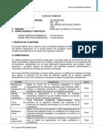 Plan de Trabajo IND 521 Febrero 2020