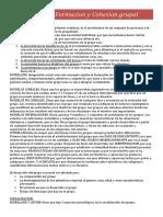 Capitulo 8 Formacion y Cohesion grupal (dinamica).docx