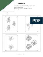 perechi.pdf