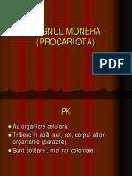 9.REGNUL MONERA