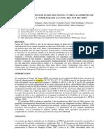 Calvo-El_skarn_magnesico_de_Pampa_del_Pongo.pdf
