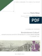 disertaie bombardament cultural rememor-1pdf